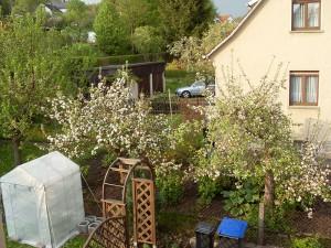 So sah der Garten am Anfang aus.